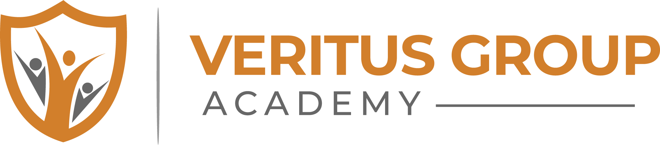Veritus Group Academy